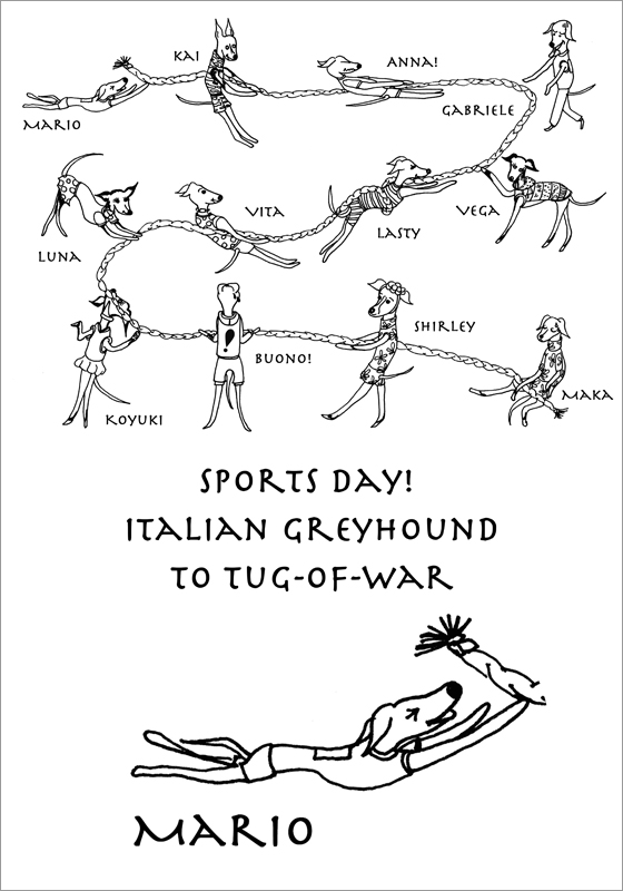 Sports day! Italian Greyhound to tug-of-war|ARATA HOUSEオリジナル|Tシャツ