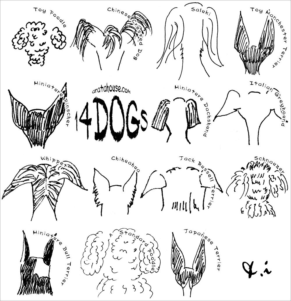 14dogs&I|ARATA HOUSEオリジナル|「好きなメッセージを入れる事ができる」小さなトートバッグ
