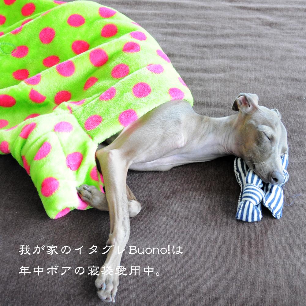 寝袋&カフェマット|いつでもどこでも便利な寝袋|ボア薄い生地|選べる6カラー