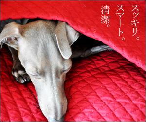 スッキリ、スマート、清潔。|ARATA HOUSE寝袋|キルティング薄い生地