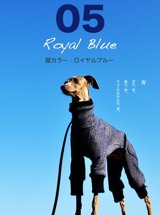 犬服|トレーナー|選べる3タイプ×5カラー(ポピーレッド/桜色/イタグレグレイ/栗色/ロイヤルブルー)