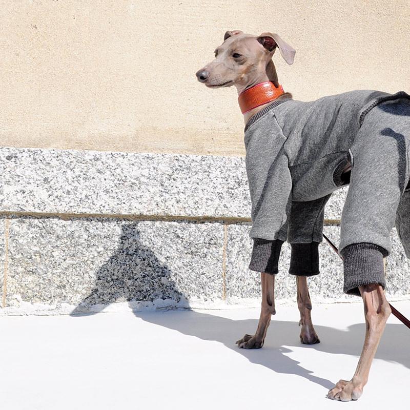 犬服|トレーナー|選べる3タイプ×3カラー(ポピーレッド/桜色/イタグレグレイ)