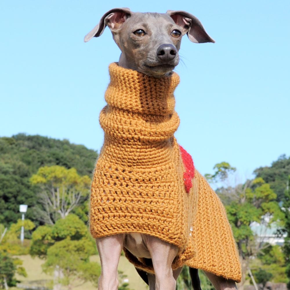 正面|イタグレポンチョ|ウール100%の毛糸を編んだ手作りのPoncho「Mother of Yotchan」