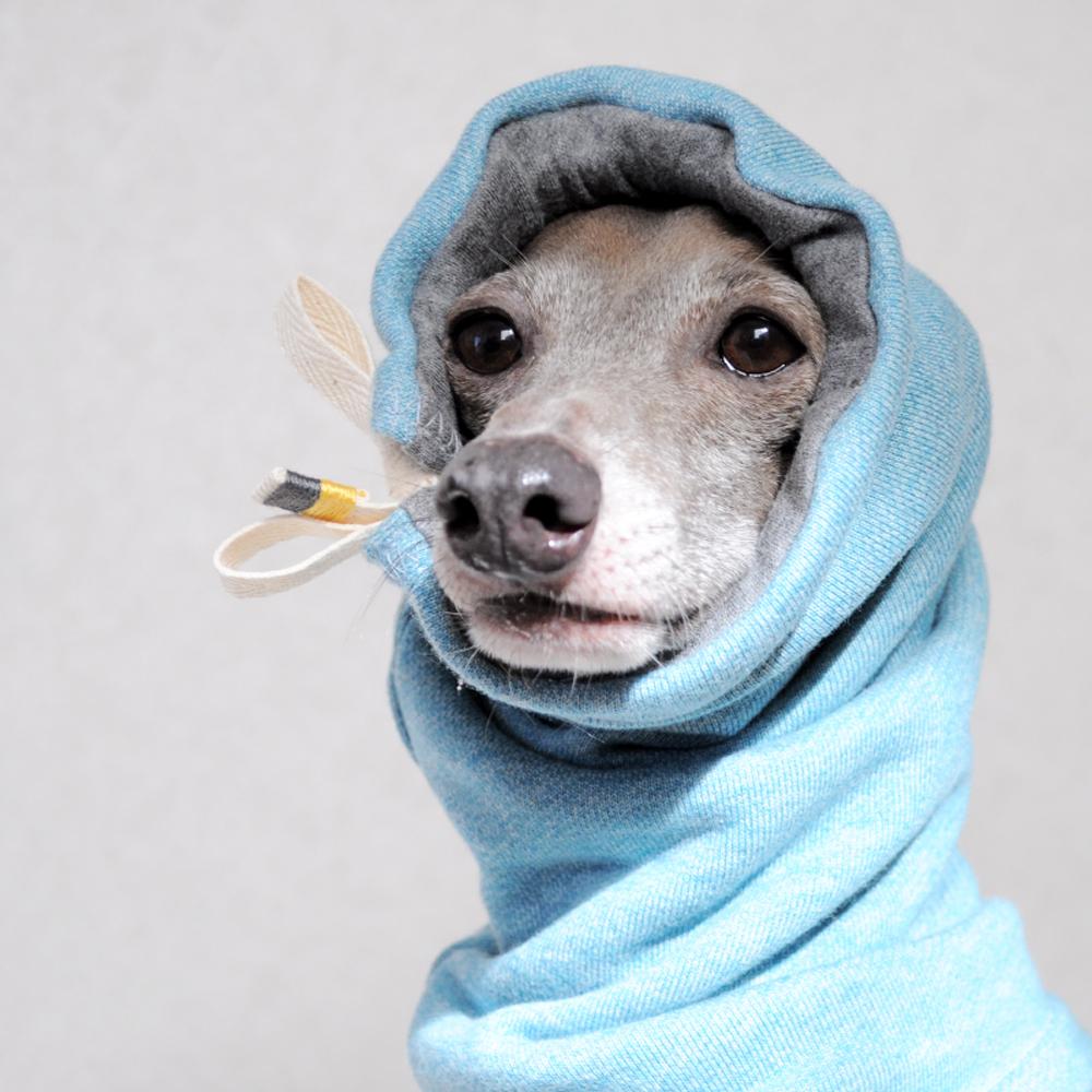 犬服|お耳ぬくぬくスヌード&ネックウォーマー|「血管炎・寒冷凝集素症・耳介辺縁血管炎」の予防にも最適|選べる5カラー(ポピーレッド/桜色/イタグレグレイ/栗色/ロイヤルブルー)