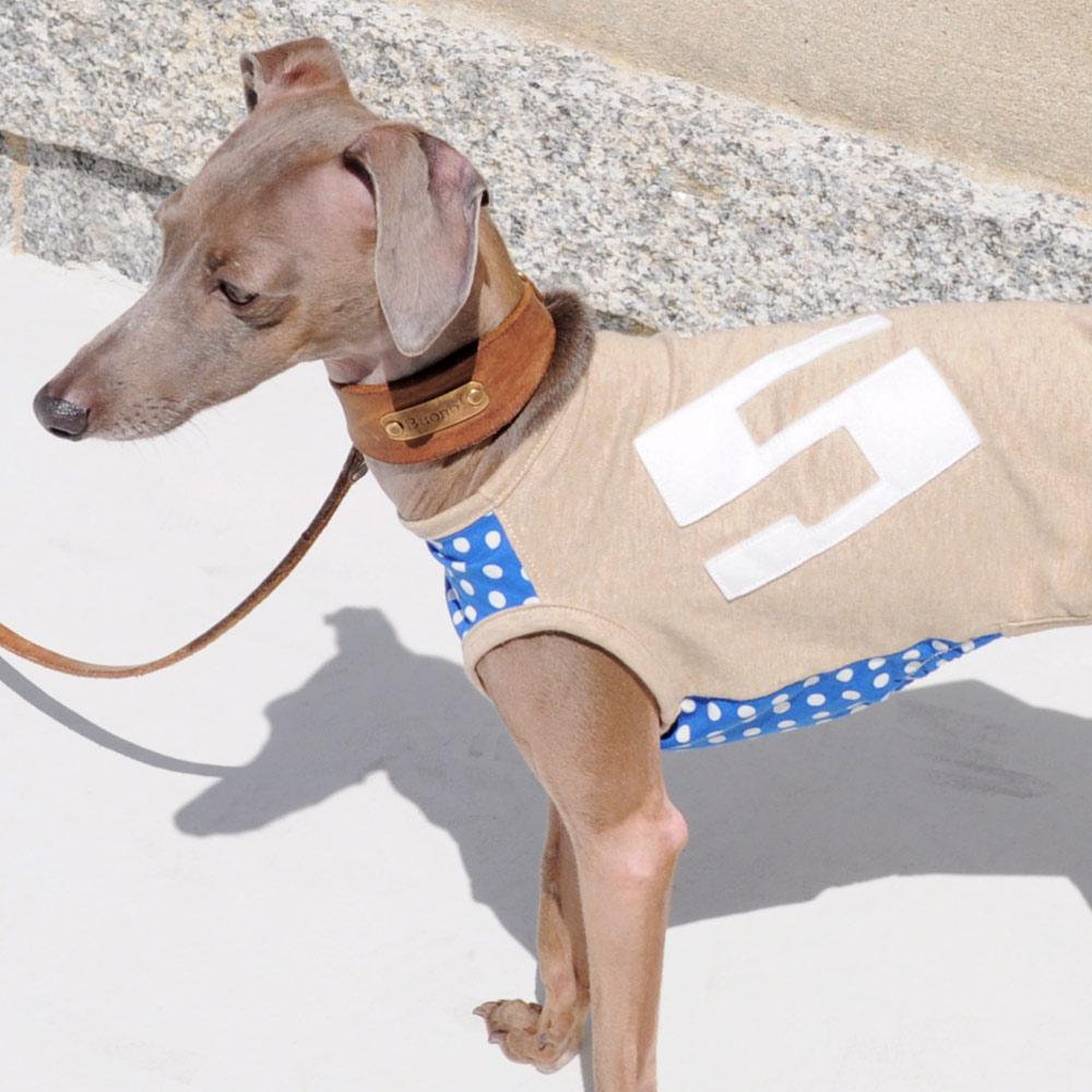 犬服|ブルーソーダードット|選べる3タイプ×3カラー(ベージュ/グレイ/ネイビー)