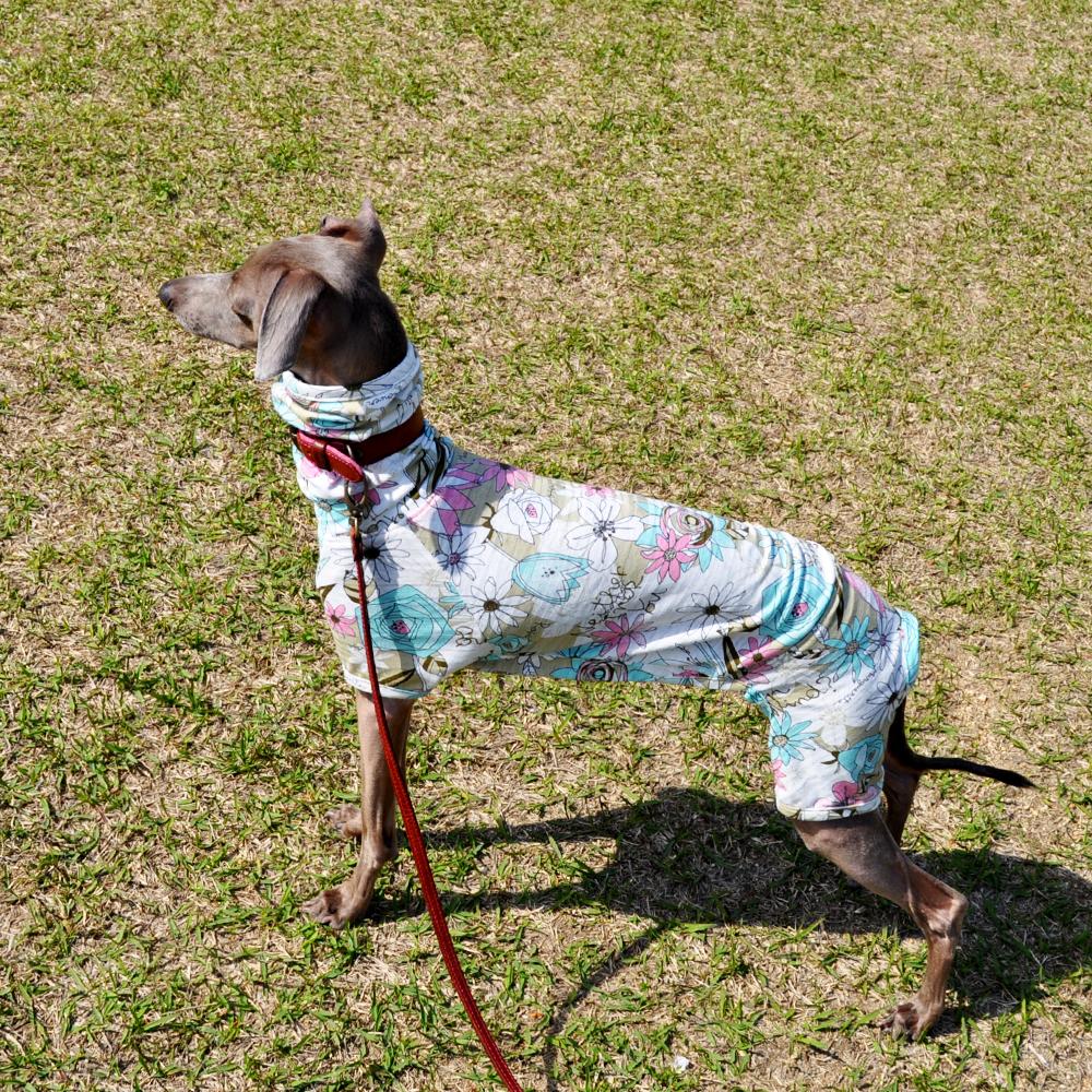 犬服|Flower Garden|選べる3タイプ×3カラー(ベージュ/パープル/ネイビー)