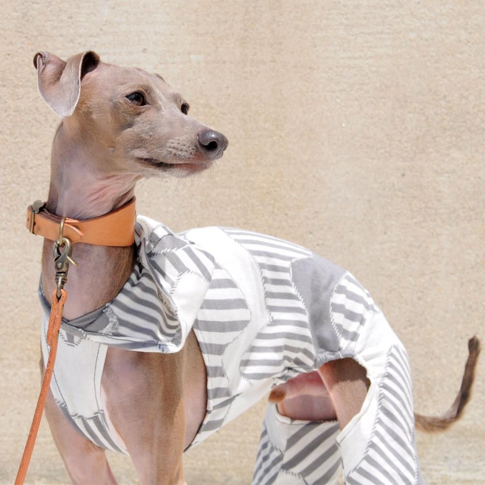 犬服|Lightning Border|選べる3タイプ×3カラー(グレイ/ネイビー/イエロー)