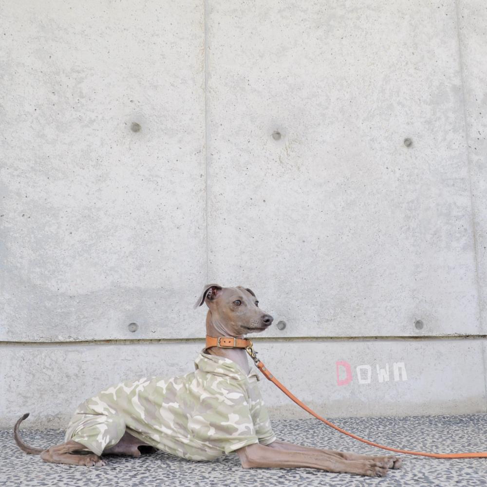 犬服|Baby Camouflage(迷彩)|選べる3タイプ×2カラー(ライトグリーン/ダークグリーン)