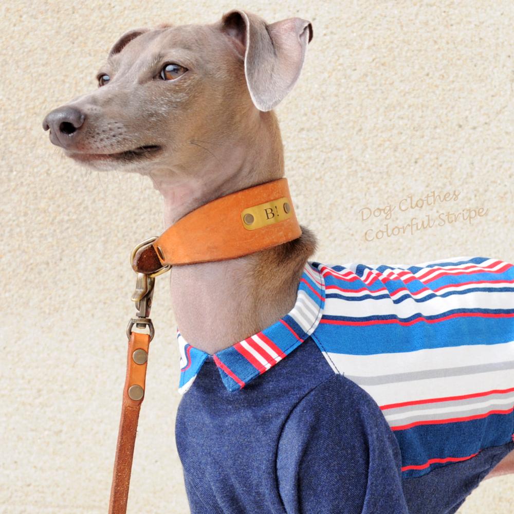 犬服|カラフルストライプ|選べる2タイプ×3カラー(ブルー/イエロー/レッド)