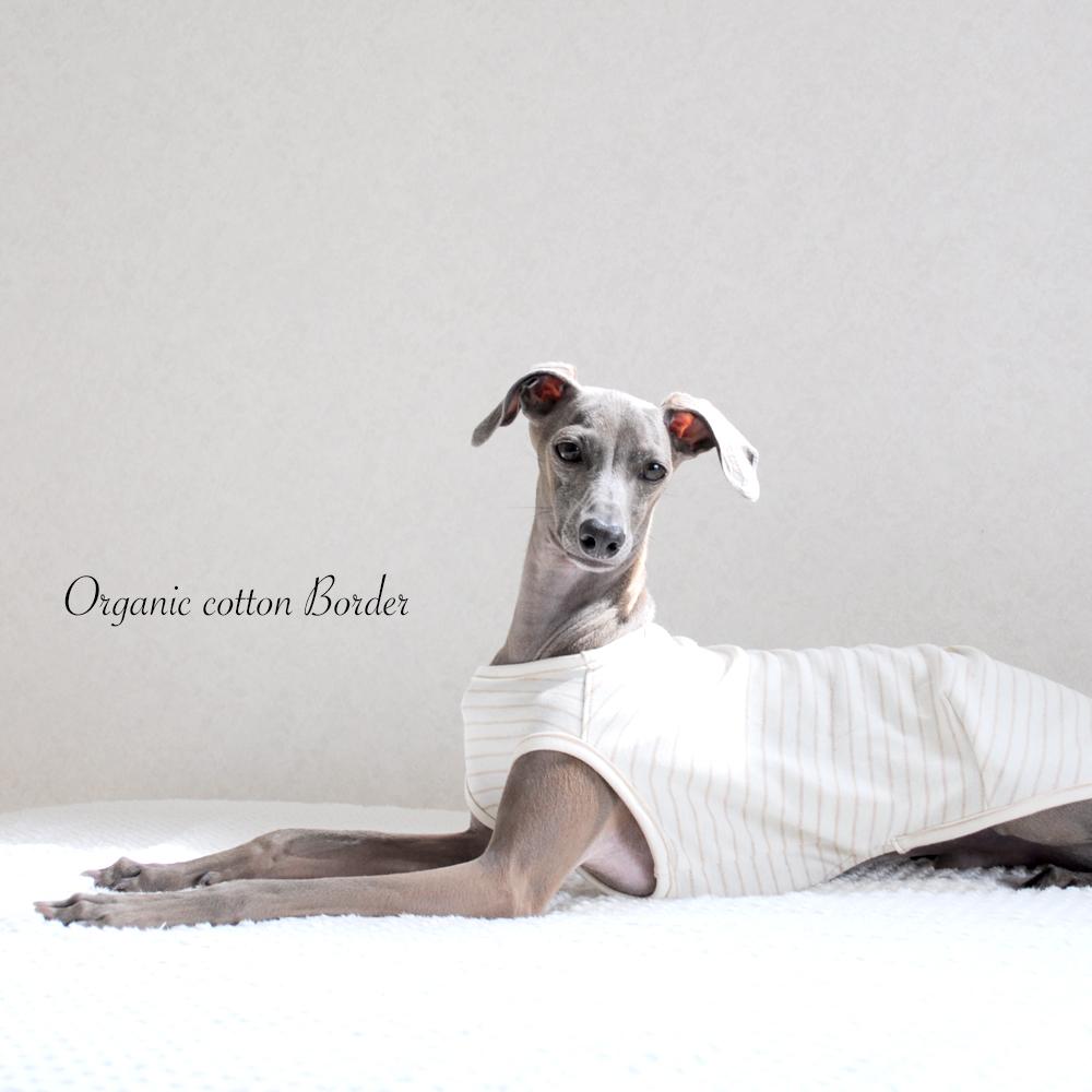 犬服|愛犬と環境にやさしいオーガニックコットン|選べる3タイプ×3カラー(ボーダー/パイル/レーシーニット)