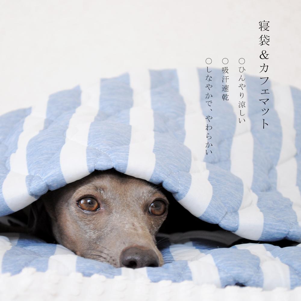 寝袋&カフェマット|暑い日も快適に「ひんやり涼しい」「吸汗速乾」「しなやかで、やわらかい」|マーベラスクールキルト生地|選べる2カラー(ペールクリーム/アクア)