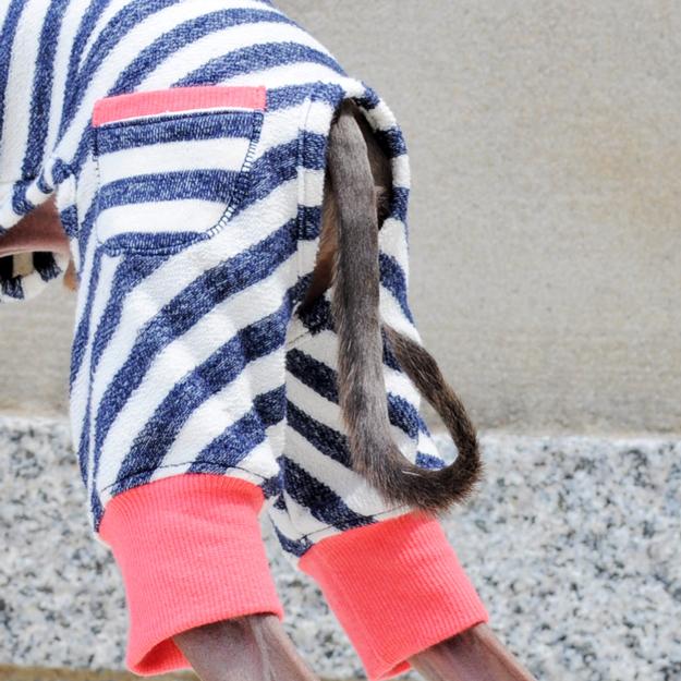 犬服|柔らかな縞模様と小さな物入れのお洋服|選べる3タイプ×3カラー(亜麻色/空色/紺青色)