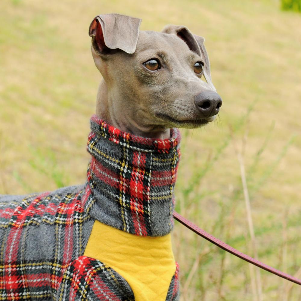 犬服|タータンチェック|選べる3タイプ×4カラー(たんぽぽ色/グラスグリーン/紺青色/テラコッタ)
