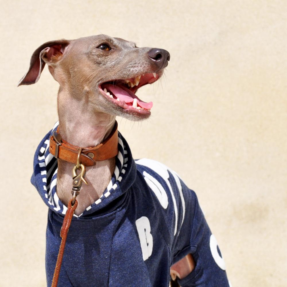 犬服|My dog silhouette. The dog's name is...「世界に1つだけの洋服」|ロンパース(ボーダー裏地付き)×選べる3カラー(ベージュ/ネイビー/グレイ)