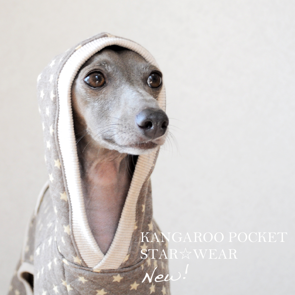 犬服|カンガルーポケットのスター☆ウエア|選べる3タイプ×3カラー(ピンク/ブルー/ブラウン)