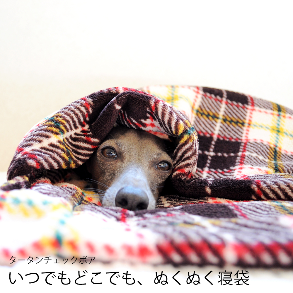 寝袋&カフェマット|いつでもどこでも、ぬくぬく寝袋