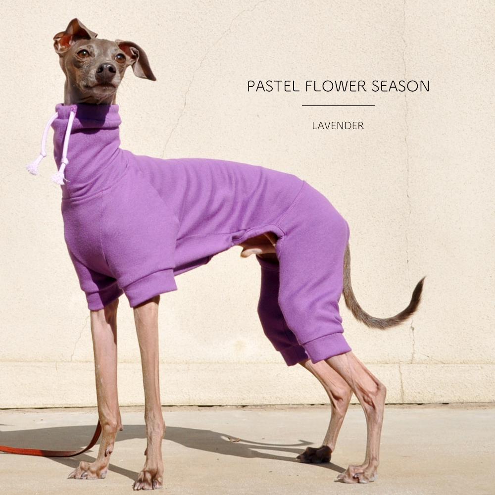 犬服|PASTEL FLOWER SEASON|選べる3タイプ×3カラー(ラベンダー/チェリー/アガパンサス)