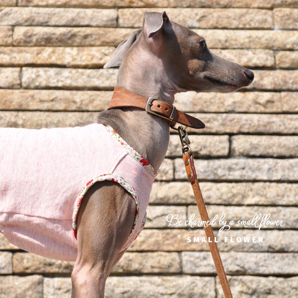 犬服|小さな花に魅せられて|トレーナー薄手|選べる3タイプ×3カラー(ハニースィート/ベビーピンク/スカイグレイ)