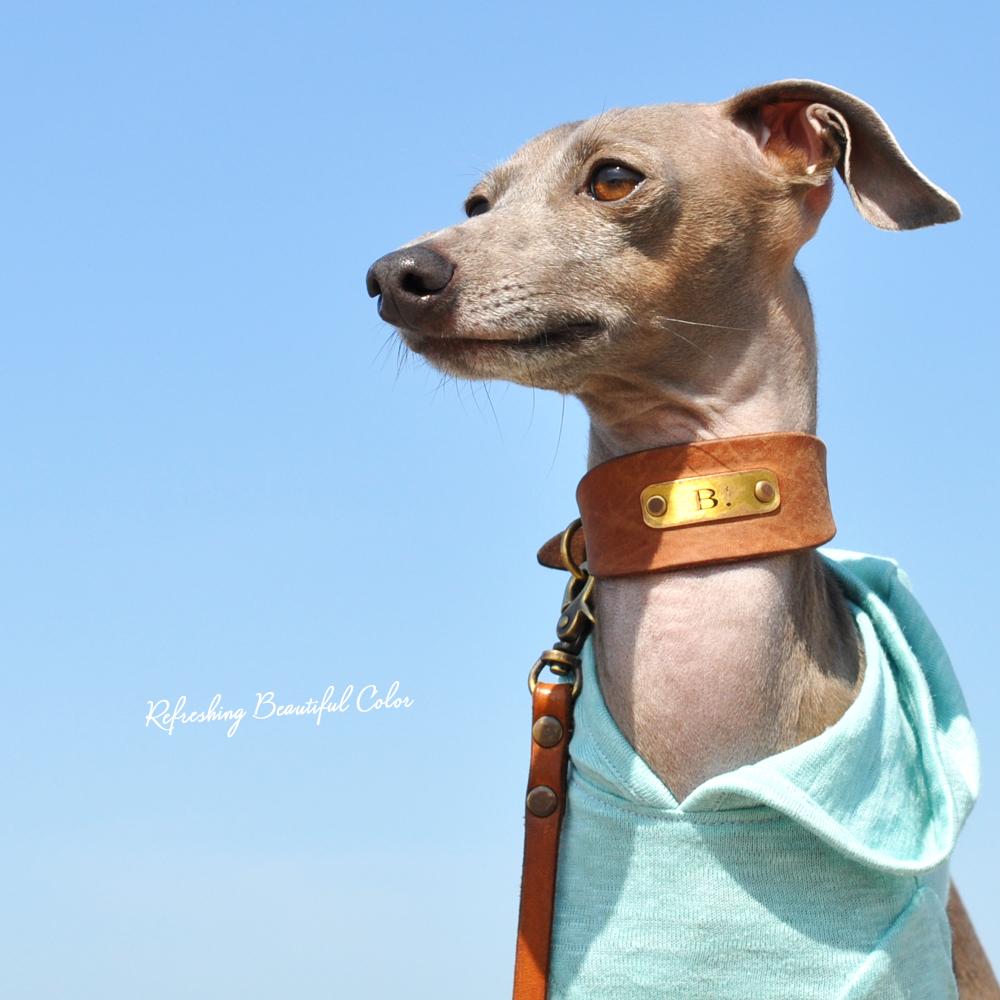 犬服|爽やかなキレイ色リネン天竺ニット|選べる4タイプ×3カラー(ペールアクア/ペールレモン/マジョリカブルー)