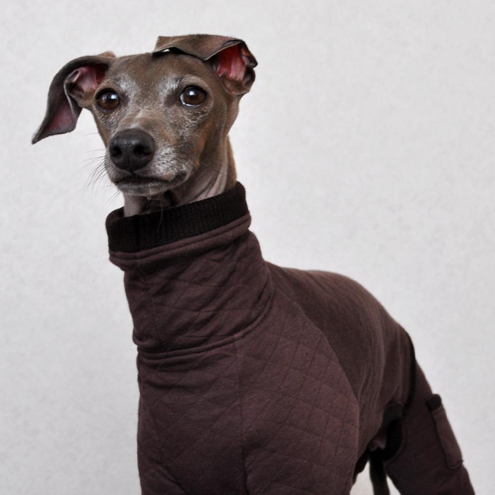 犬服|ぬくぬく、あったか。|中綿キルト|選べる4タイプ×3カラー(たんぽぽ色/紺青色/テラコッタ)