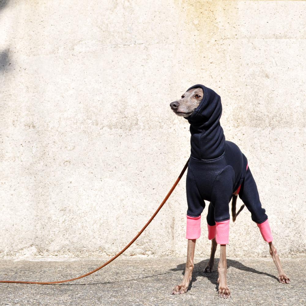 犬服|夏より暖かい冬 Winter Sports|裏起毛ボンバーヒートニット(保温)|選べる4タイプ×6カラー(パールホワイト/スレートグレイ/プルシアンブルー/マホガニーブラウン/ワインレッド/パールグレイ)