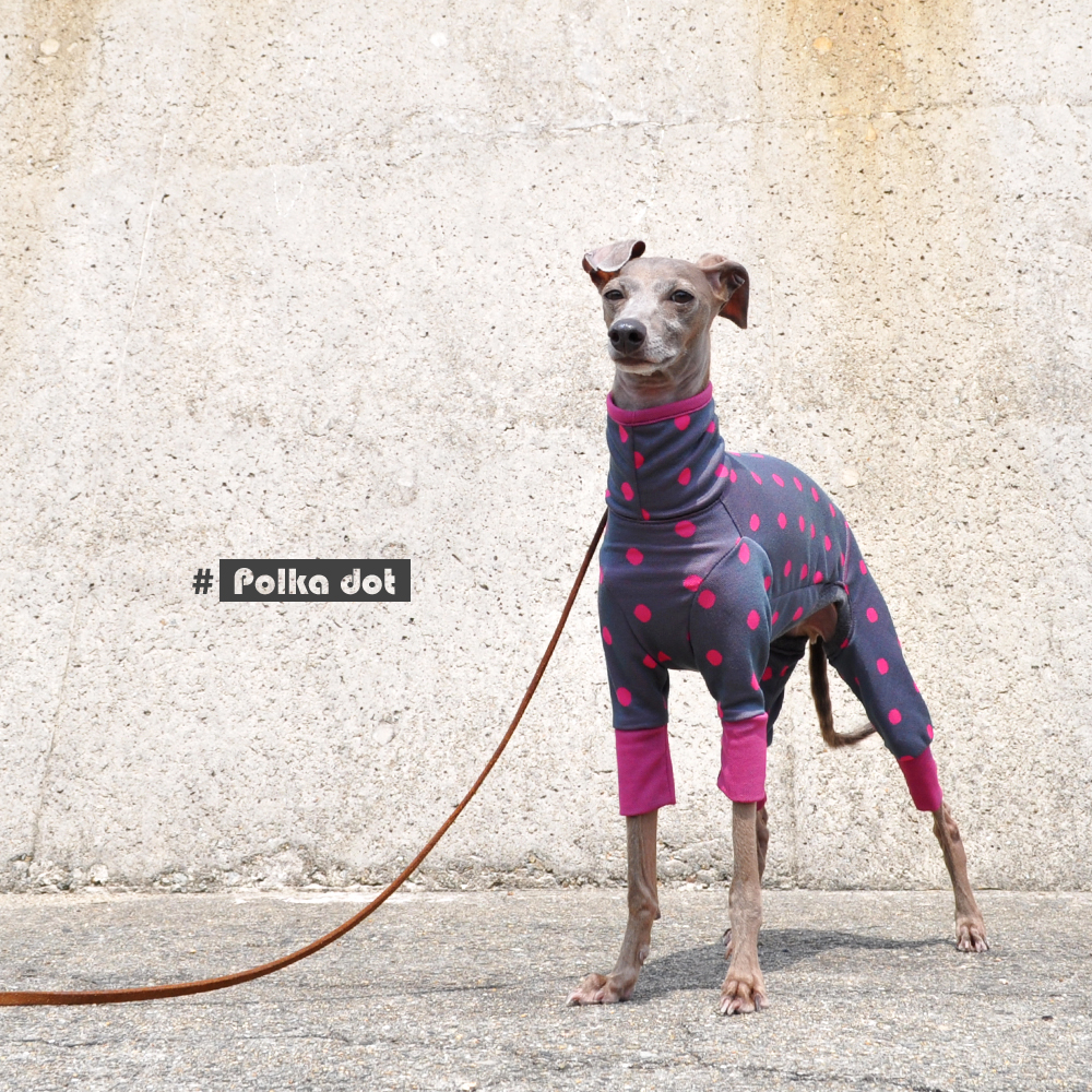 犬服|水玉模様のジャガードニット|選べる4タイプ×3カラー(オペラ/プルシアンブルー/サフランイエロー)