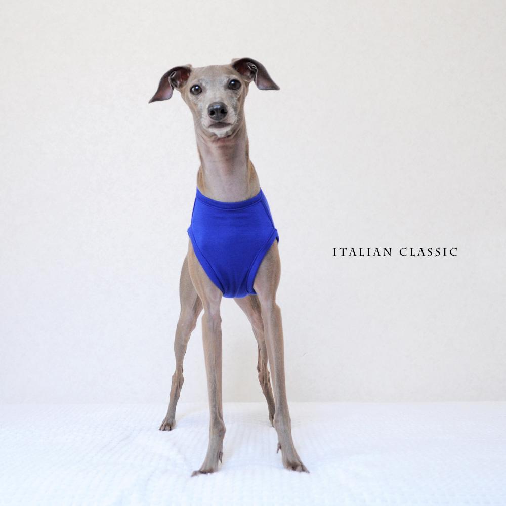 犬服|Italian Classic|イタリア製ストレッチ天竺ニット|選べる4タイプ×4カラー(Blue/Gray/Yellow/Purple)