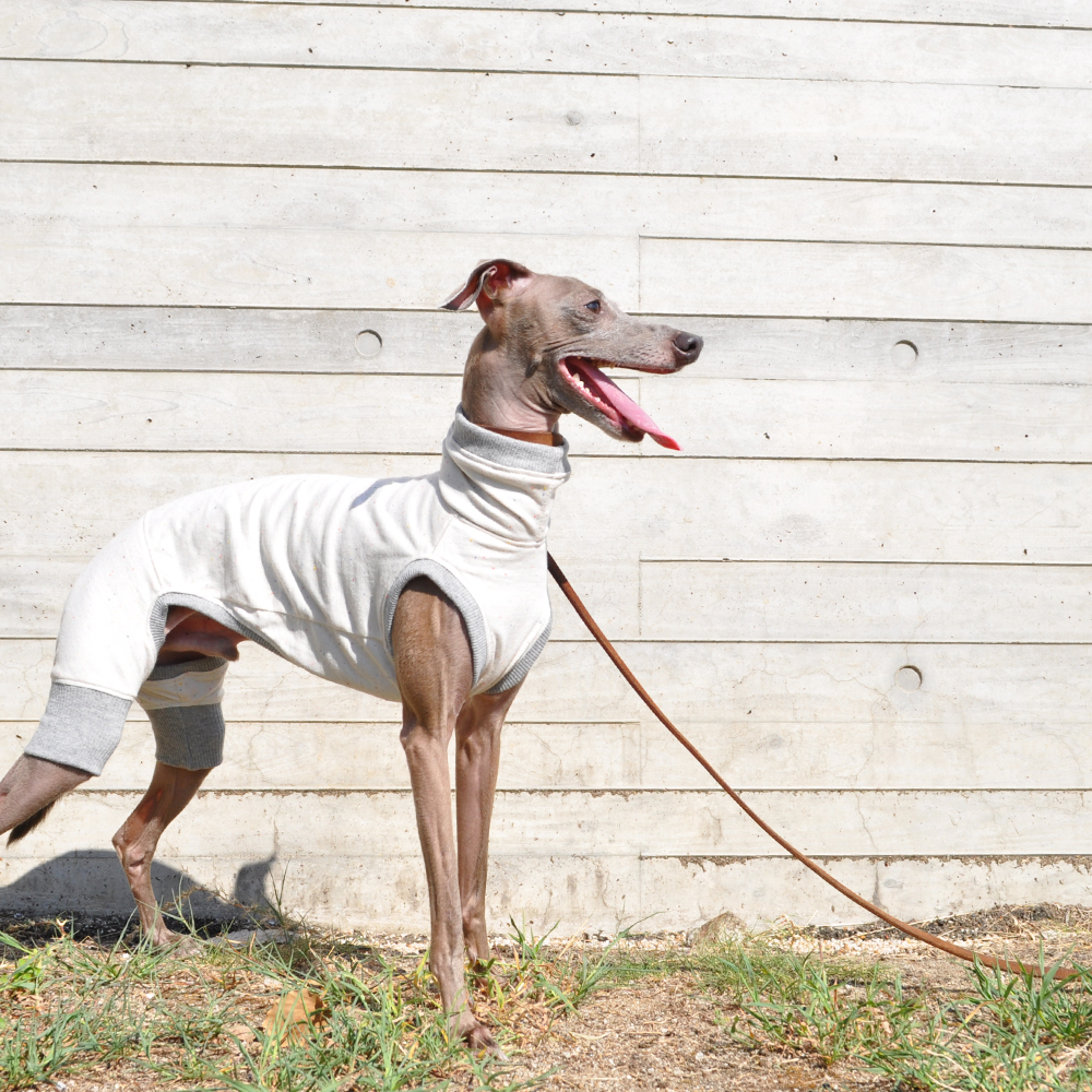 犬服|やさしく、やわらかなカラーネップ|選べる4タイプ