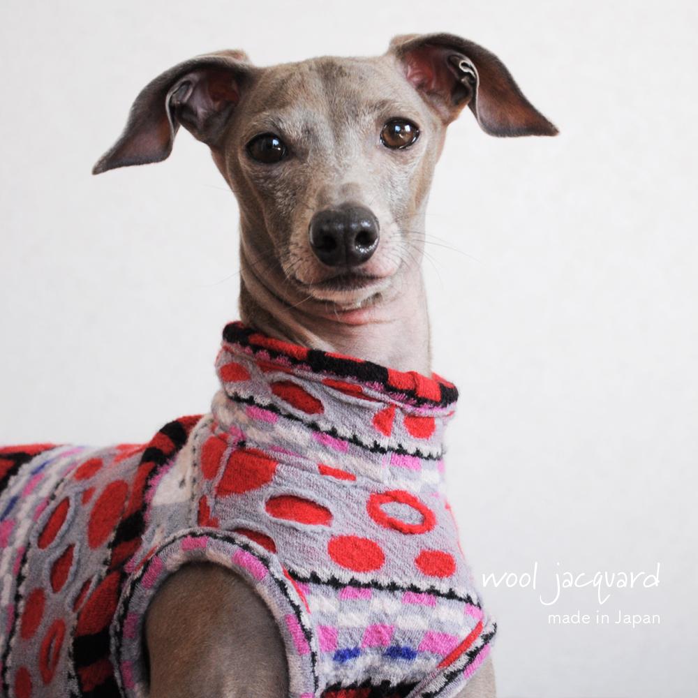 犬服|日本製ウールジャガード|選べる3タイプ×3カラー(Blue/Red/Black)