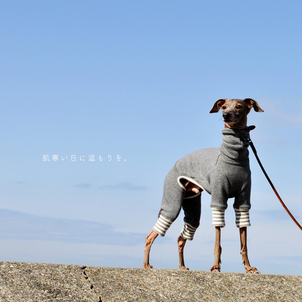 犬服|肌寒い日に温もりを。|裏起毛ボンバーヒートニット(保温)|選べる4タイプ
