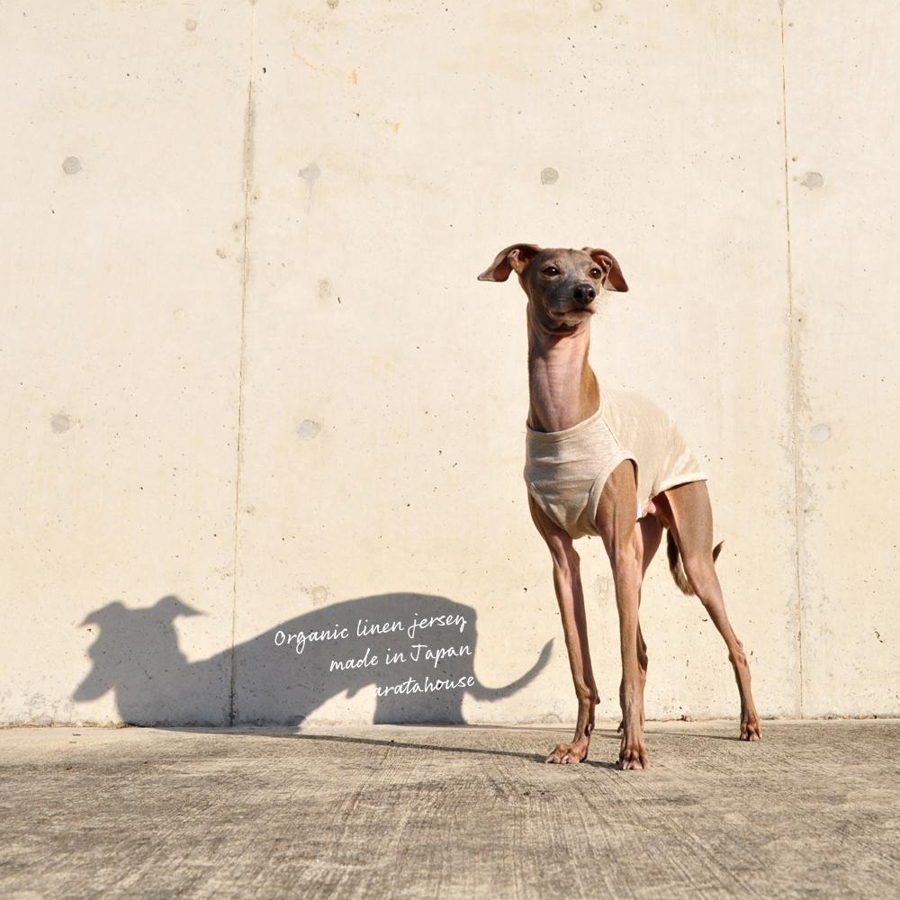 犬服|上質な日本製オーガニックリネンジャージ|選べる3タイプ