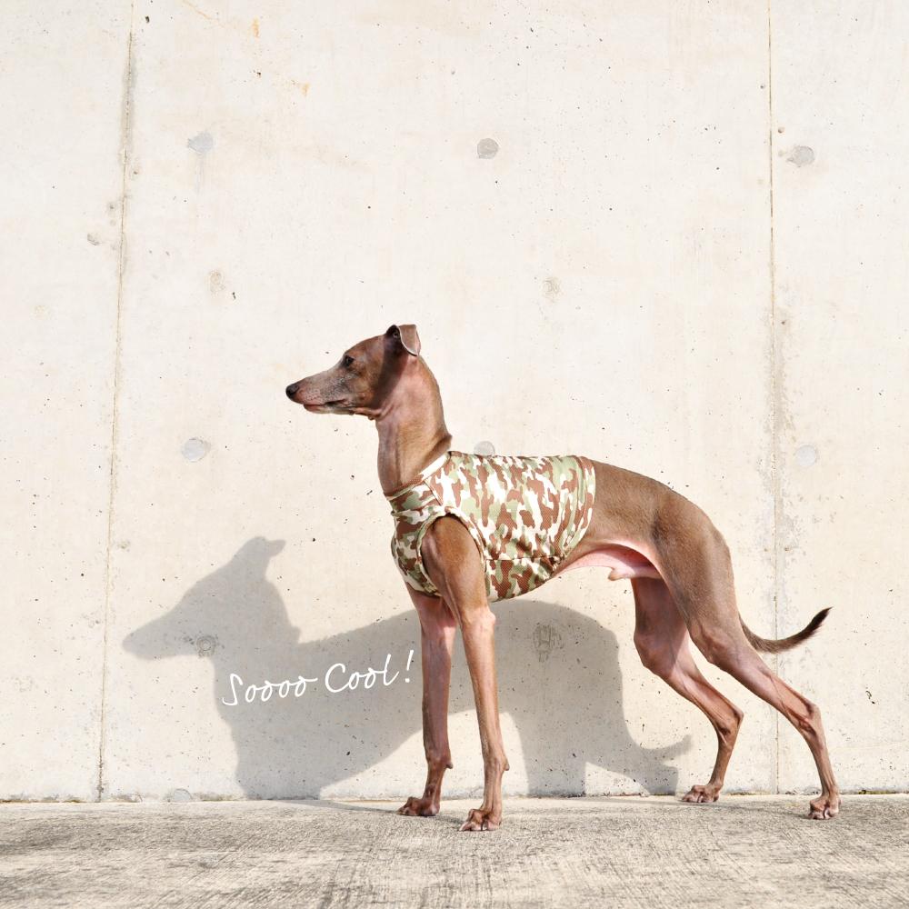 犬服|SOOOO COOL! 水に濡らしてひんやり!UVカット90%|ウォータークールクロス特殊冷感ニット|選べる3タイプ×2カラー(グリーン/ブルー)