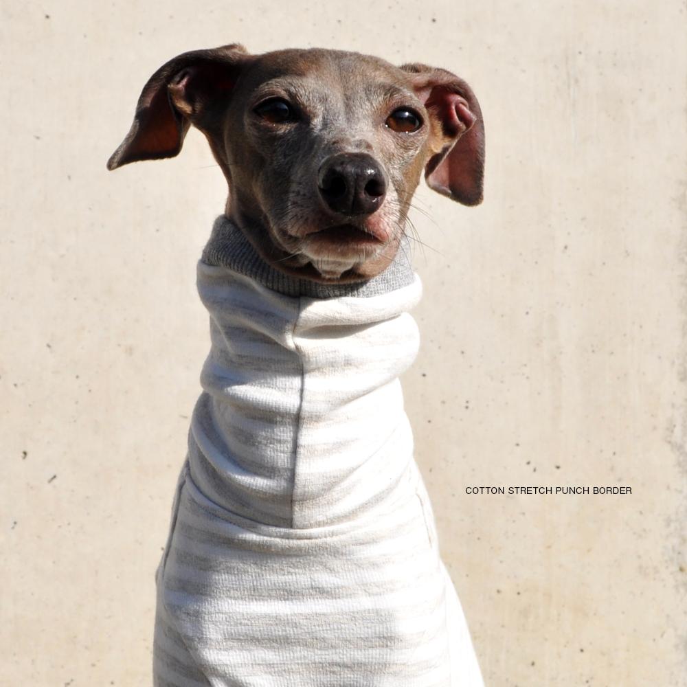 犬服|コットンストレッチポンチボーダー|選べる4タイプ(グレー)