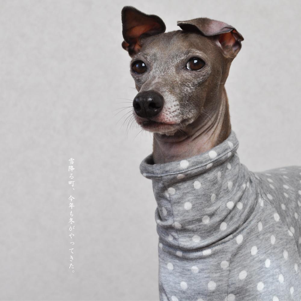 犬服|雪降る町、今年も冬がやってきた。|接結ニット|選べる4タイプ×3カラー(ベージュ/ピンク/グレイ)