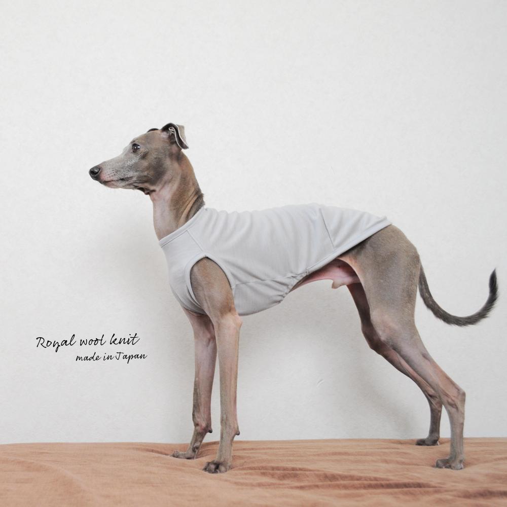 犬服|ロイヤルウールニット|選べる4タイプ×2カラー(パールホワイト/ルージュ)