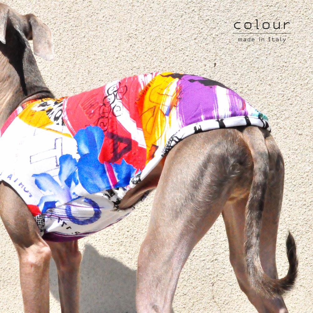 犬服|colour|上質なイタリア製舶来プリントニット|選べる4タイプ×2カラー(Red/Blue)
