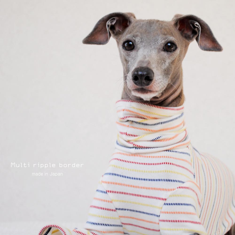 犬服|先染マルチリップルボーダー天竺ニット|選べる4タイプ