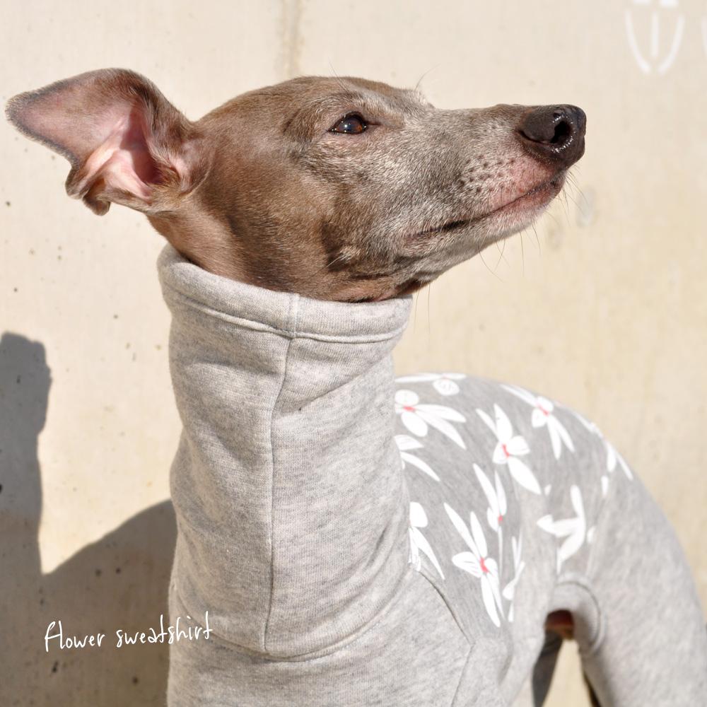 犬服|Flower sweatshirt|トレーナー|ジャスミン裏起毛ニット|選べる4タイプ